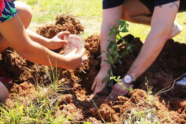 unae-verde-2019-plantacion-de-arboles-02080CC476-1A95-340A-DF61-943BF63E1C29.jpg