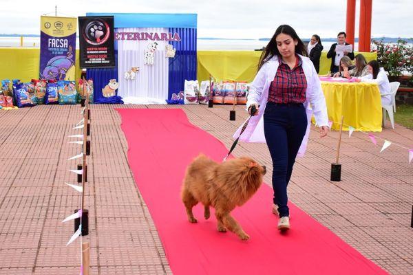 semana-del-veterinario-desfile-12283ED142-7E1C-2077-89A2-A22701CB3C0F.jpg